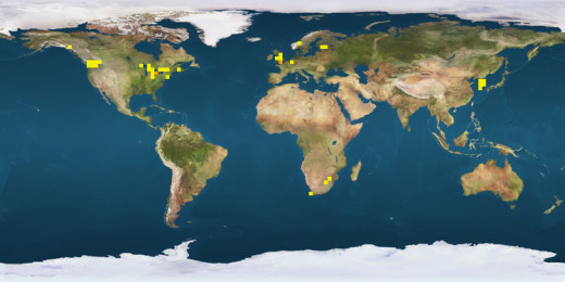 Acer ginnala distribution (yellow patches)