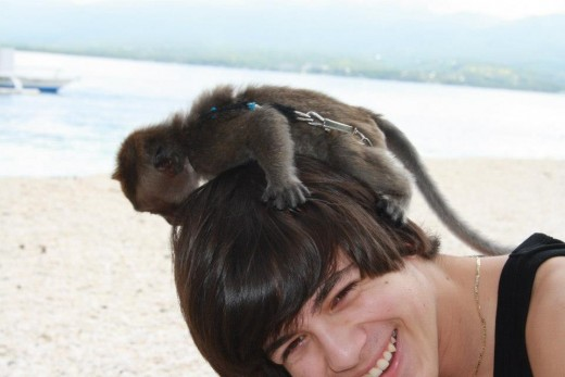 White Peeble Sand Beach - Santander, Liloan, Cebu, Philippines - Diving place for most Koreans & Japanese - my son enjoyed playing with the monkey (pet of the Koren owner of the beach resort)