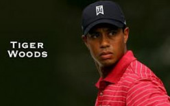 Sergio Garcia, Tiger Woods, And Fried Chicken....