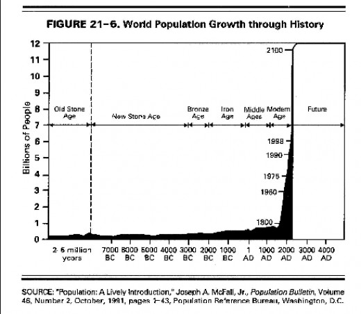 The emergence of the human race in terms of numbers