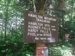 Rodney Falls, A Trail Dudes Hiking Guide
