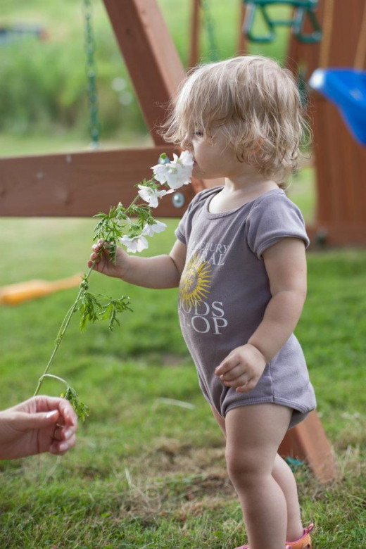 (Sara is a photographer and a family friend, she took this wonderful photo) My daughter stopping to smell the flowers.