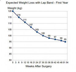 Expected Weight Loss Rates for Low Carb, Low Fat Diets, Fasting