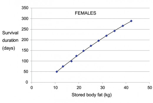 Survival Rates for Starving Females of Various Weights
