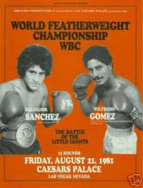 Wilfredo Gomez suffered his first defeat at the hands of the magnificent Salvador Sanchez.  He had knockout power in both hands but Sanchez was a special talent.