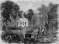 The History of American Barbecue: Early History