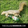 thecollegewarrior profile image