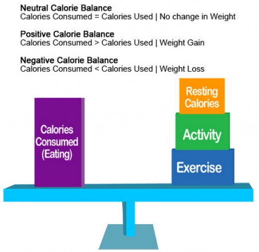 When the Calories you eat equals the Calories you expend, weight stays constant