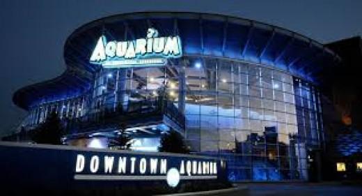 Aquarium at night