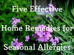 Five Effective Home Remedies for Seasonal Allergies