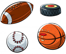 "There are considered to be 4 Big Professional Team Sports in the U.S. Football, Baseball, Hockey and Basketball...If you include the ""sometimes Y"" rule, you would then add Soccer."