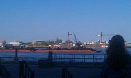 One of the many ships we saw cruising along the Mississippi River!