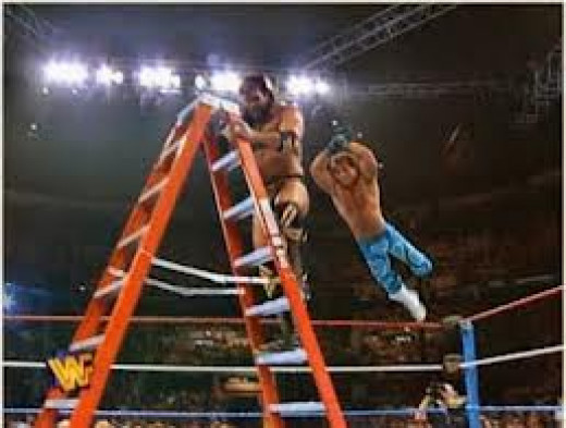 Ladder matches are a big part of wrestling and there are multiple types of ladder matches.