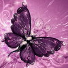 AButterfly profile image
