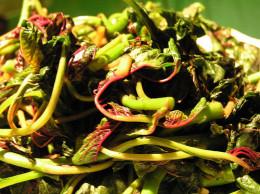Stir fry Chinese Spinach or Amaranth with Garlic