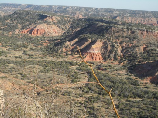 Spanish Skirts of Palo Duro