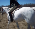 How to Get in Shape to Begin Horseback Riding