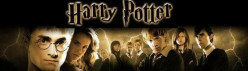 Which Harry Potter character do you connect the most with?