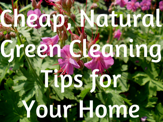 Affordable and healthy options to clean your home.