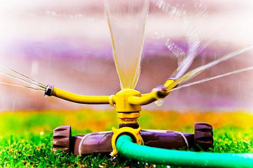 For a standard lawn sprinkler, a traditional hose can't be beat.