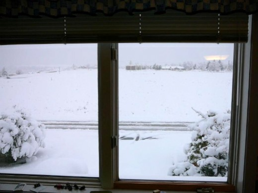 A snowy day from my office window.