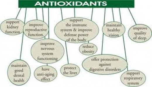 Health benefits of taking Antioxidants rich food items.