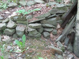 Stacked stone wall/planter I made for a new hydrangea plant.