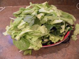 Bowl of fresh spring greens from La Vista CSA