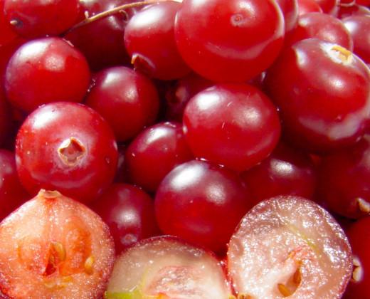 Juicy red cranberries.