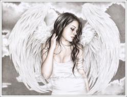 Angels Fall Chapter Fifteen