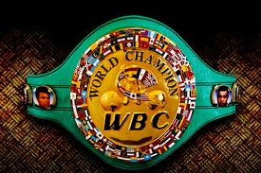 The World Boxing Counsel has it's on rules and regulations pertaining to title bouts that it sanctions. They are based in Mexico and they get the most respect of the sanctioning titles.