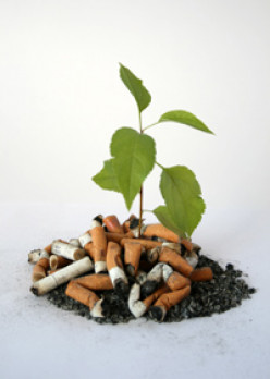 Smoking Beyond You / The Impact Of Cigarettes
