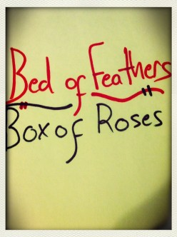 Bed of Feathers - Box of Roses