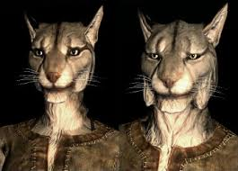 The Khajiit race.