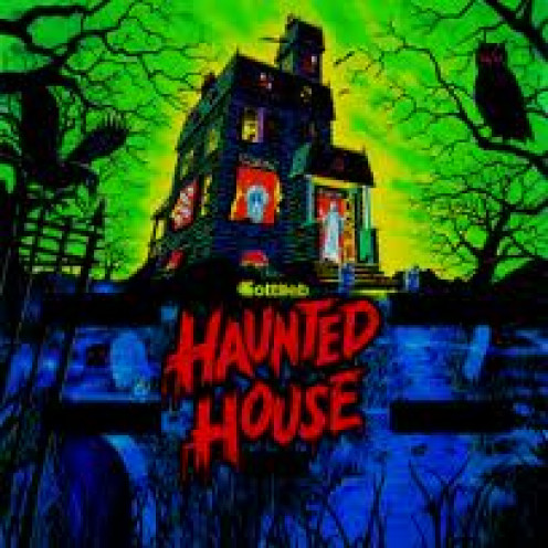 Haunted House features questions with clues that you respond to. It has creepy music and it's actually pretty freaky but the graphics are only so so even for the time.