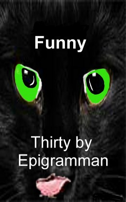 http://www.amazon.com/Funny-Thirty-by-epigramman-