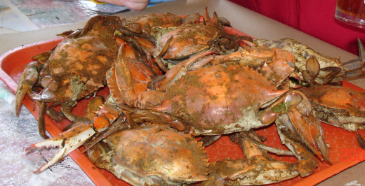or fresh crab