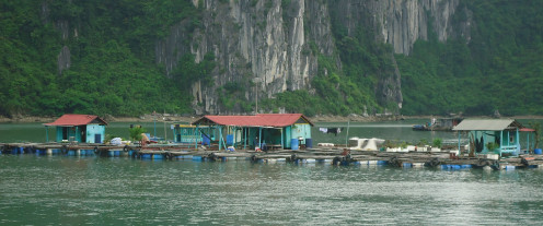 Floating village at Ha Long Bay