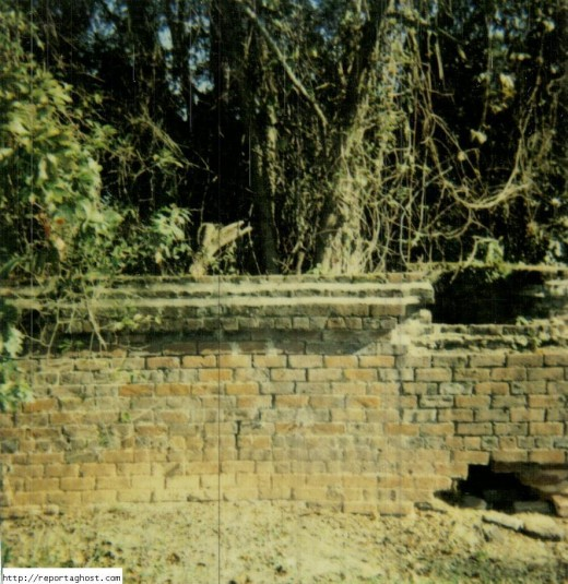 A close up of the brick crypt in the photo above with the oak tree growing up out of the middle of the crypt.
