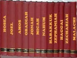 12 BOOKS OF MINOR PROPHETS
