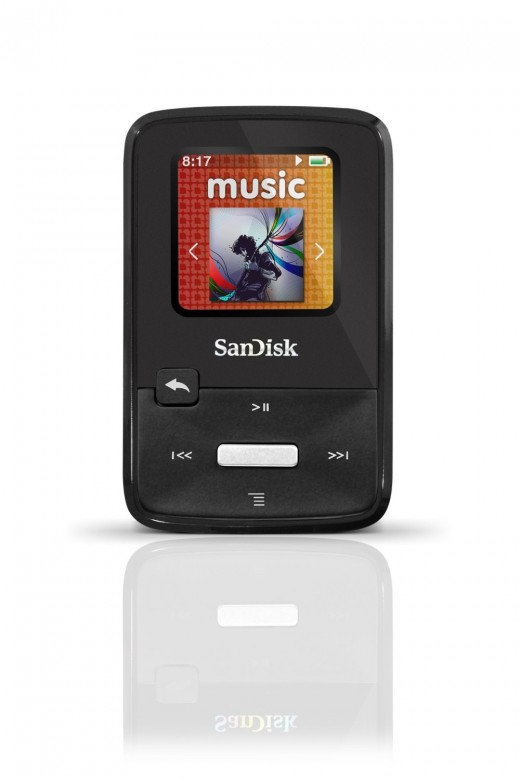 SanDisk Sansa Clip Zip 4 GB MP3 Player