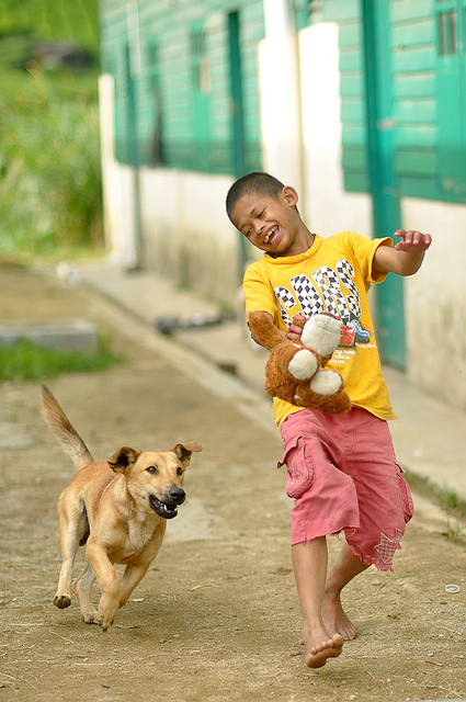 Dogs can be a great source of fun for children but whether or not to own is a decision that needs careful consideration.