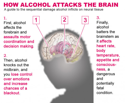 Chart indicating alcohol effects
