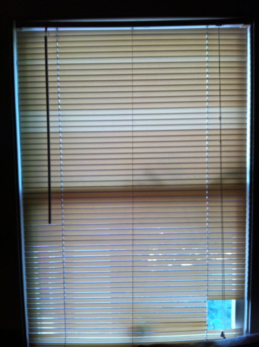 Blinds covering a window, except for a hole chewed through by my cats, so they could watch the birds.