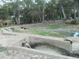 Roman bath in Greece ! We had a shower anyway ..