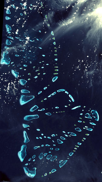 North and South Malosmadulu Atolls are in the Maldives( seen from space )
