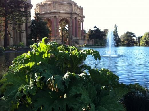 Palace of Fine Arts. San Francisco, CA.