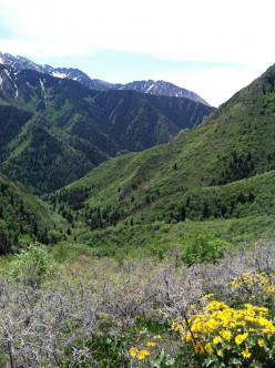 Utah Hiking Trails Near Salt Lake City: Grandeur Peak