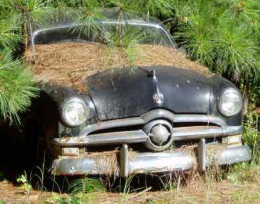 Your unused, junk car could help some people in need.