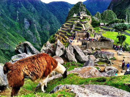 Machu Picchu - the most famous Inca City